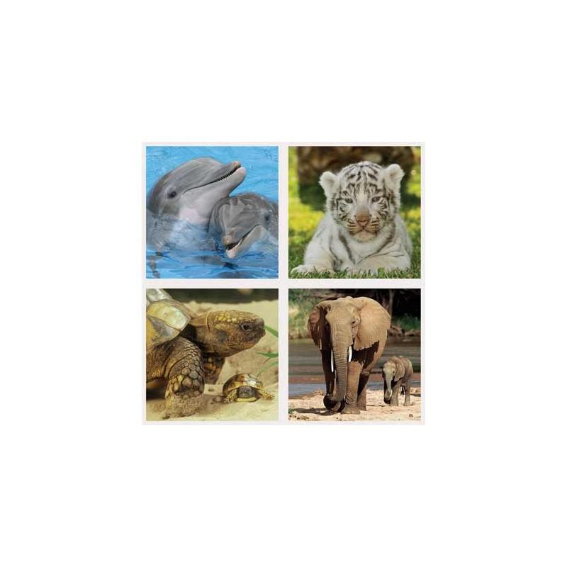 70459. Puzzle Ravensburger 2x64,2x81 piezas, Cachorros Salvajes