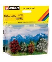 5 Arbustos Floridos 3-4cm H0-N