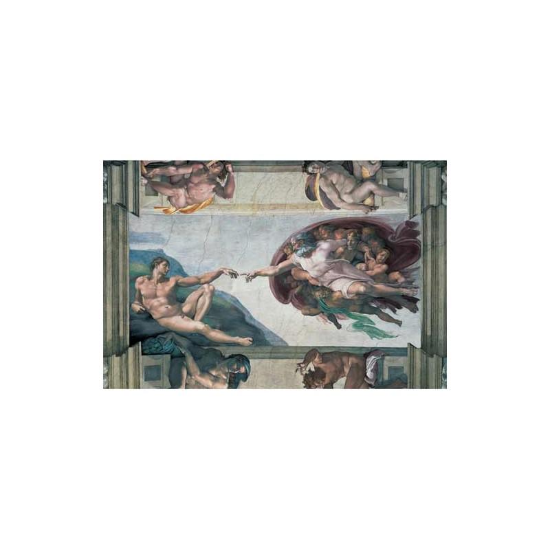 174089.Puzzle Ravensburger 5000piezas Formación de Adán,M. Ángel