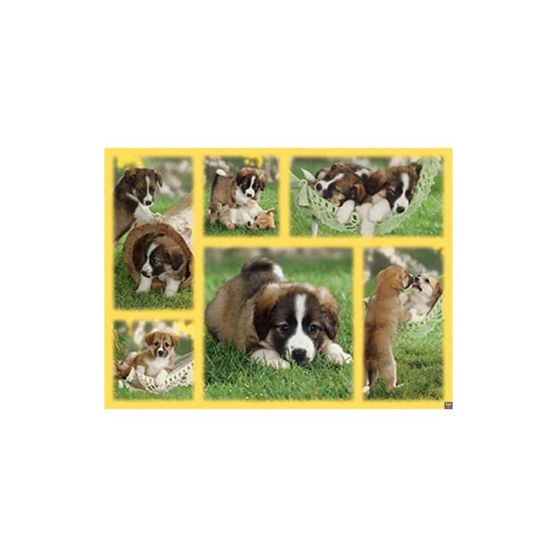 163663. Puzzle Ravensburger 1500 piezas Vida de cachorros