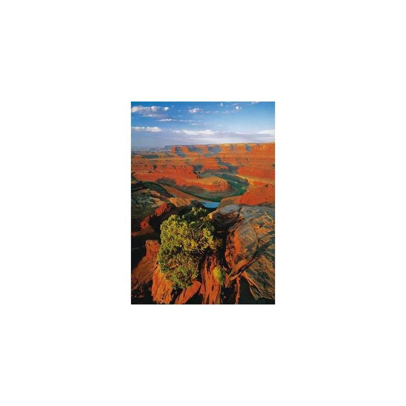 "10143. Puzzle Trefl 1000 piezas Dead Horse ""Utah, EEUU"""