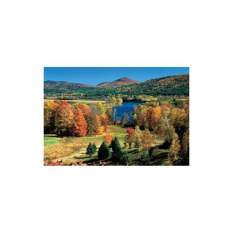 10124. Puzzle Trefl 1000 piezas Otoño en Vermont