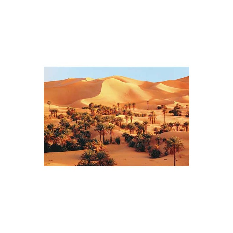 26062. Puzzle Trefl 1500 piezas Sahara