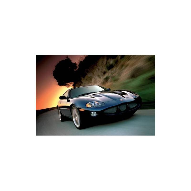 37037. Puzzle Trefl 500 piezas Jaguar XKR Coupe