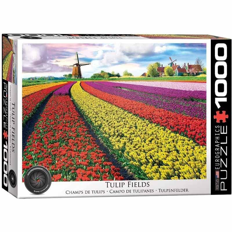 Puzzle 1000 piezas Campo de Tulipanes