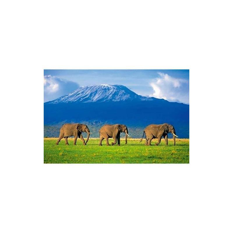 31954. Puzzle Clementoni 1500 piezas Elefantes andando