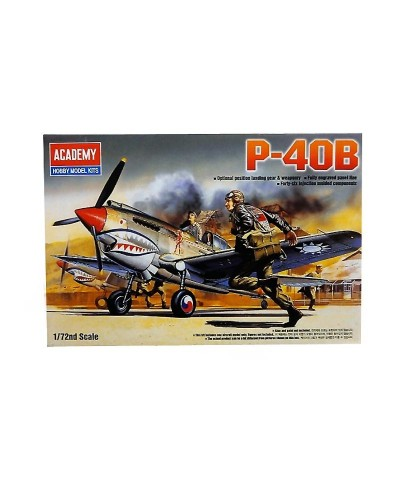 1/72 Avión P-40B